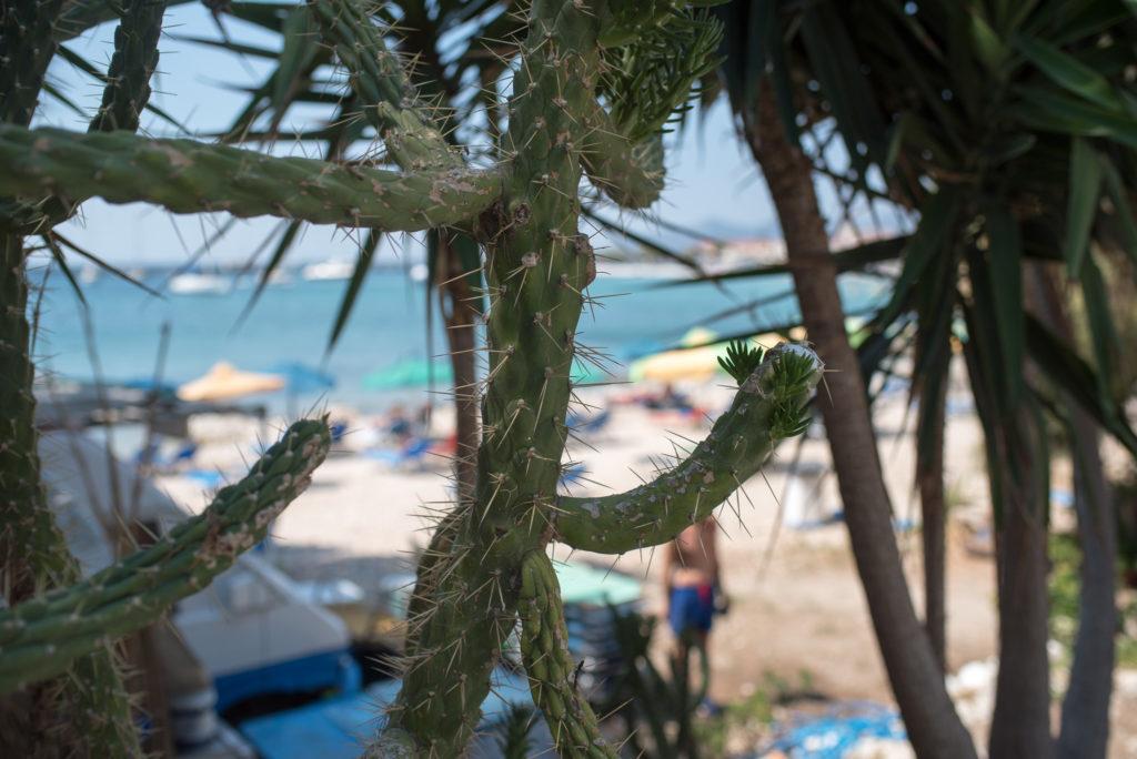 Samos Pythagorio Paradise Beach Photography Annika Lagerqvist www.annikasomething.com
