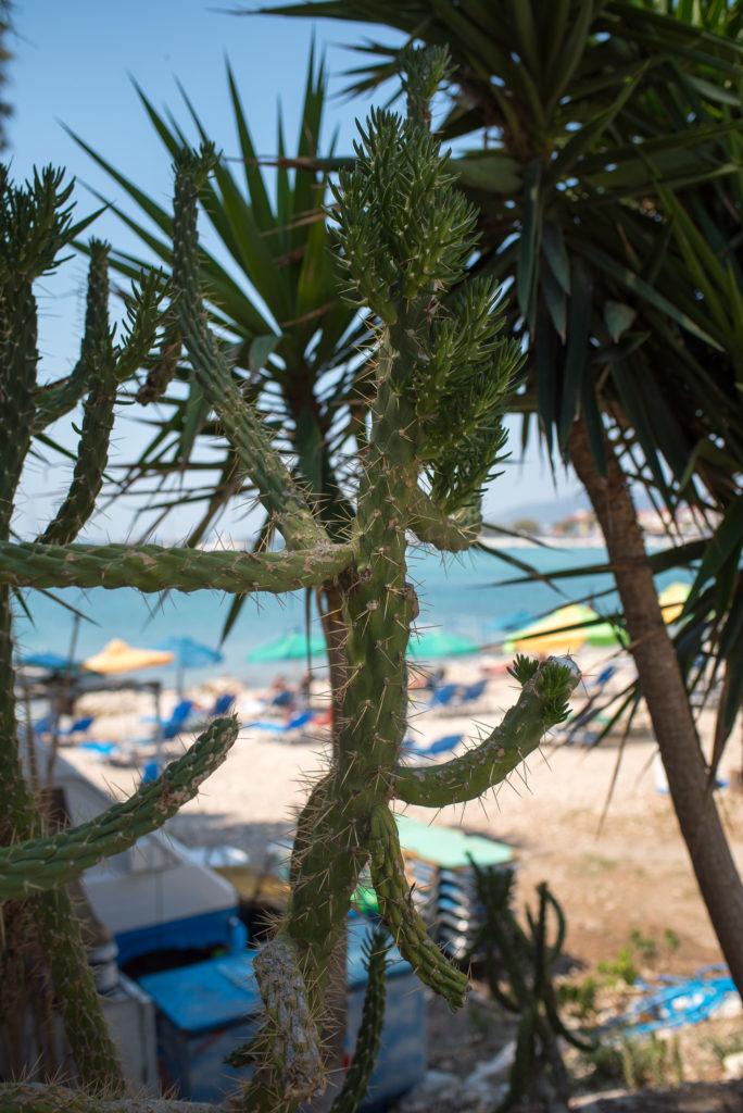 Samos Pythagorion Paradise Beach Photography Annika Lagerqvist www.annikasomething.com